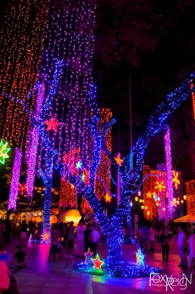Ayala Triangle Gardens at Night