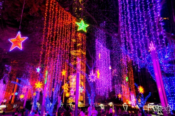 Ayala Triangle Gardens at Night